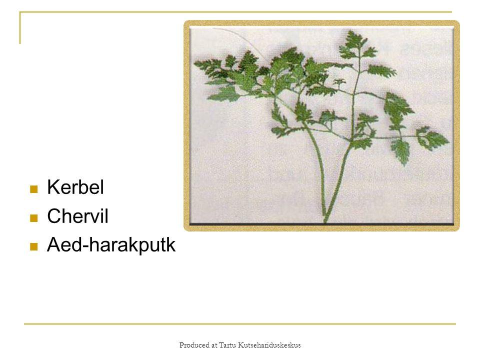 Produced at Tartu Kutsehariduskeskus