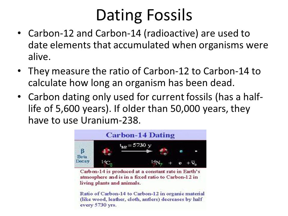 Carbon 14 the radioactive nuclide used in dating fossils has