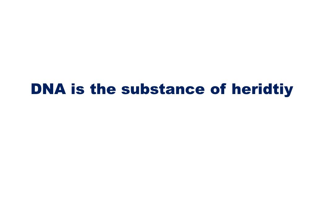 DNA is the substance of heridtiy