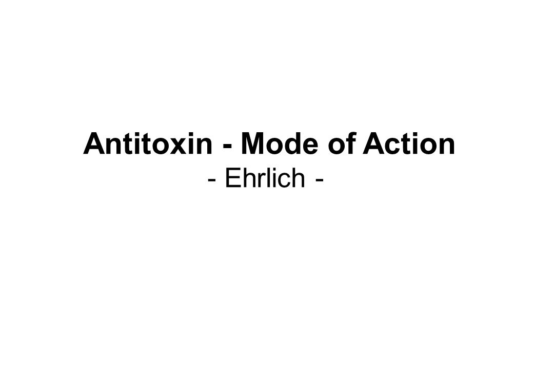 Antitoxin - Mode of Action