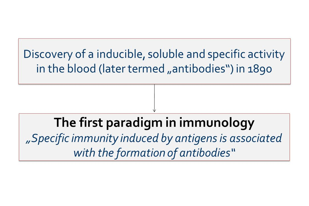 The first paradigm in immunology