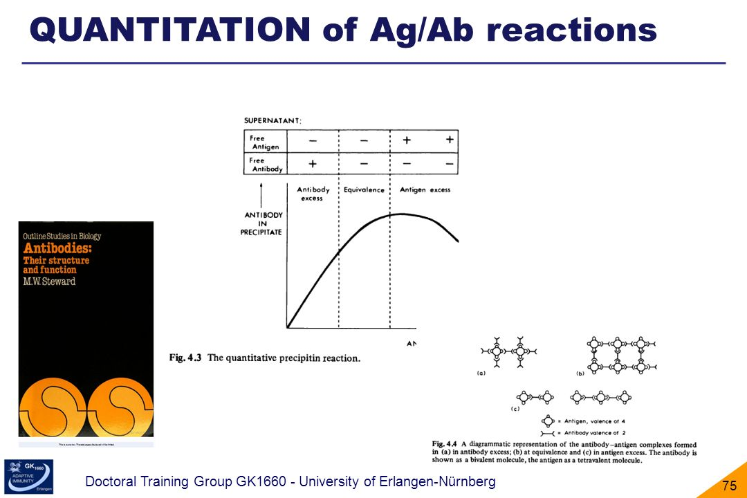 QUANTITATION of Ag/Ab reactions