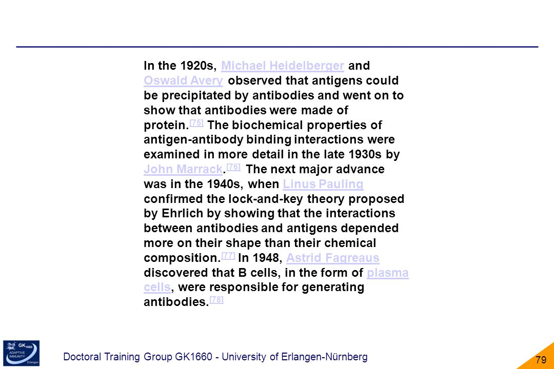 In the 1920s, Michael Heidelberger and Oswald Avery observed that antigens could be precipitated by antibodies and went on to show that antibodies were made of protein.[75] The biochemical properties of antigen-antibody binding interactions were examined in more detail in the late 1930s by John Marrack.[76] The next major advance was in the 1940s, when Linus Pauling confirmed the lock-and-key theory proposed by Ehrlich by showing that the interactions between antibodies and antigens depended more on their shape than their chemical composition.[77] In 1948, Astrid Fagreaus discovered that B cells, in the form of plasma cells, were responsible for generating antibodies.[78]
