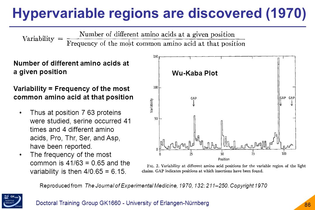 Hypervariable regions are discovered (1970)