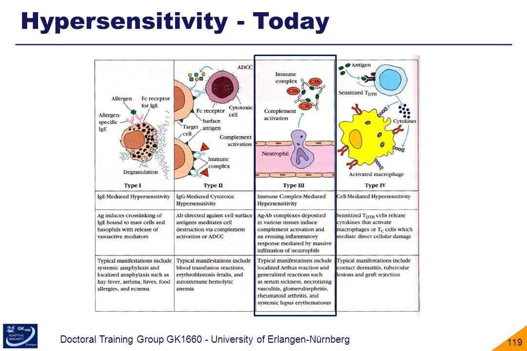 Hypersensitivity - Today