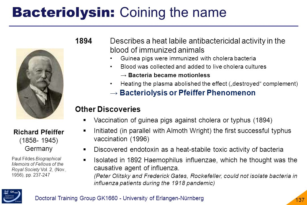 Bacteriolysin: Coining the name