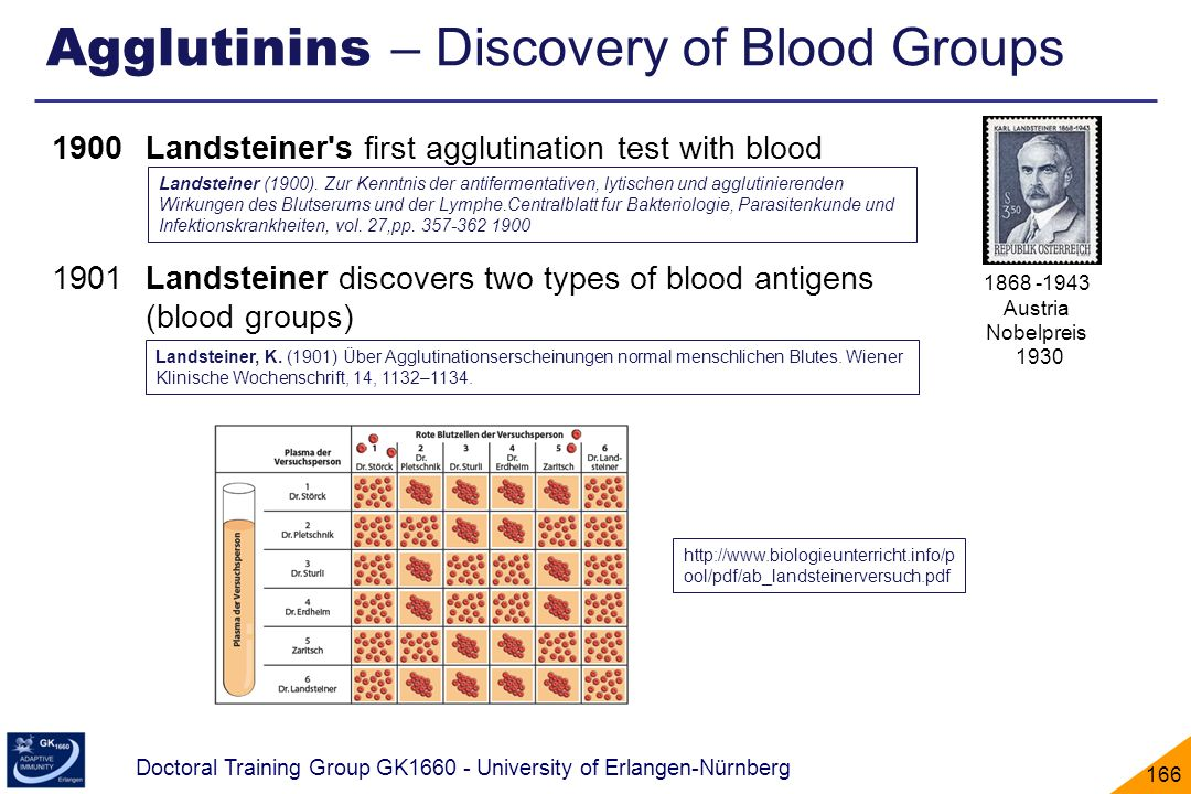 Agglutinins – Discovery of Blood Groups