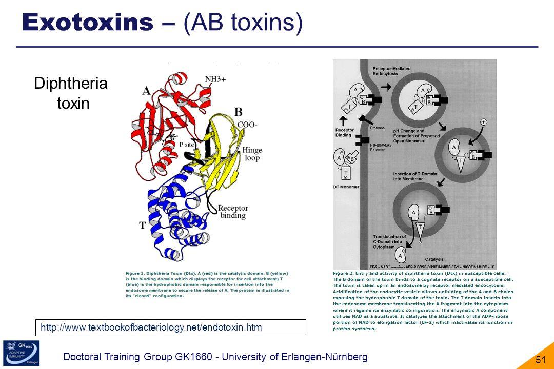 Exotoxins – (AB toxins)