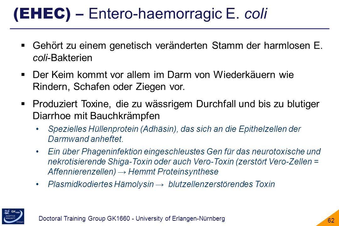 (EHEC) – Entero-haemorragic E. coli