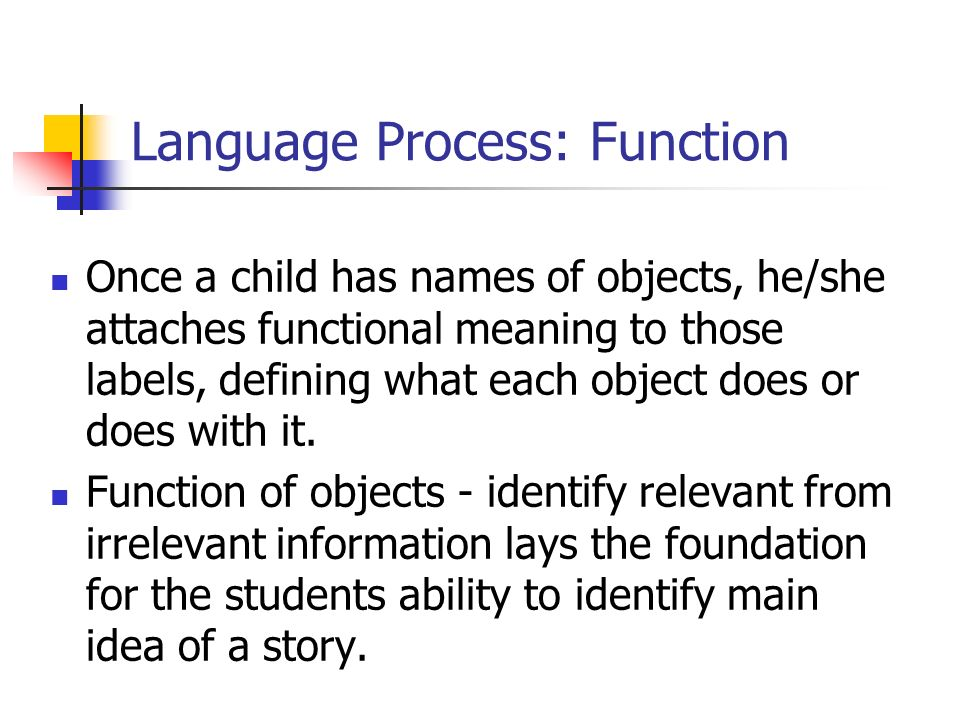 Language Process: Function