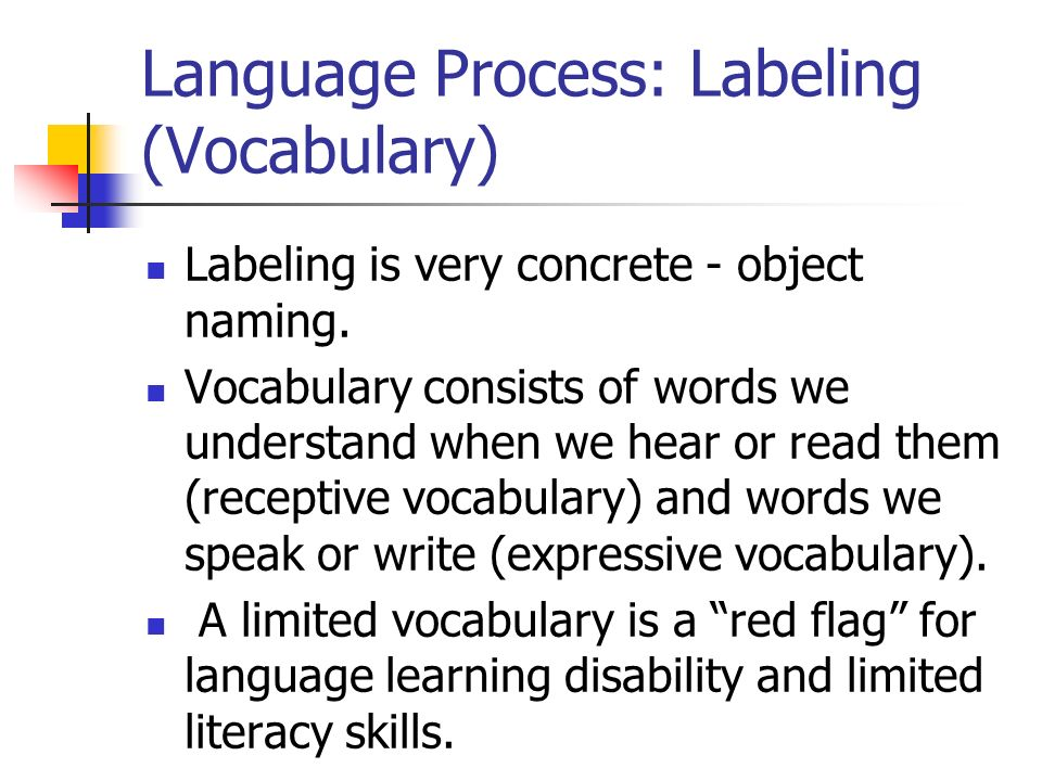 Language Process: Labeling (Vocabulary)