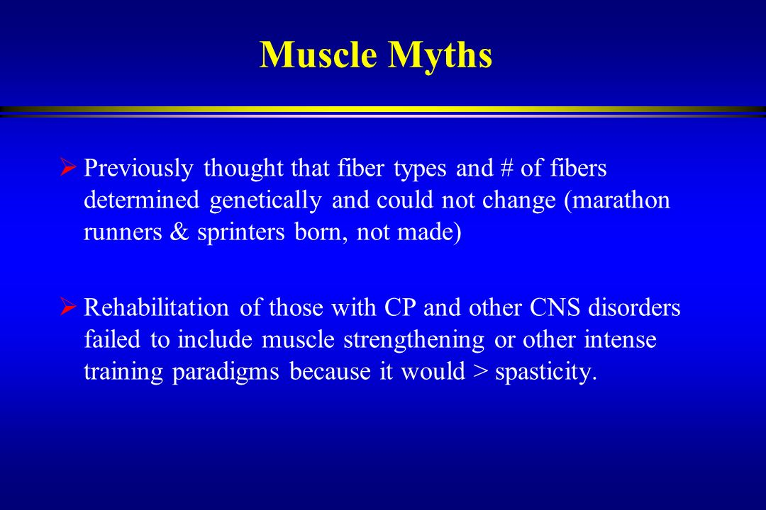 Muscle Myths