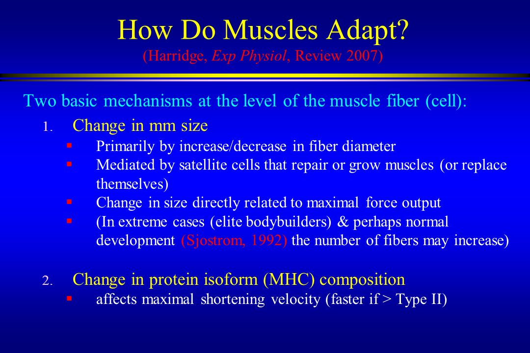 How Do Muscles Adapt (Harridge, Exp Physiol, Review 2007)