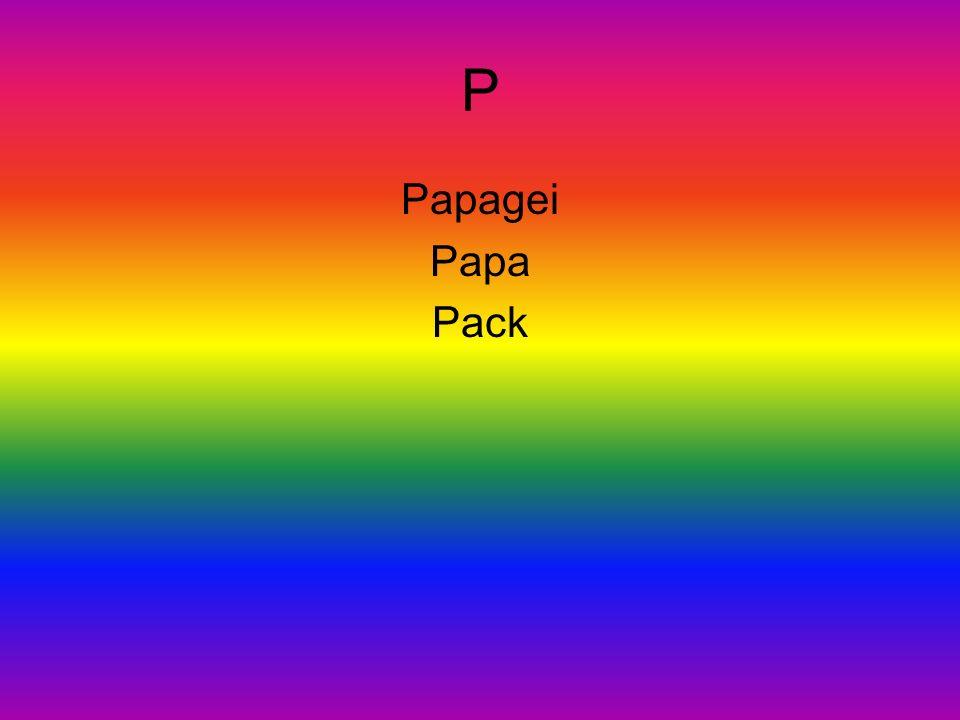 P Papagei Papa Pack