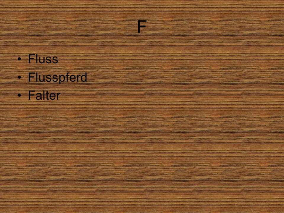 F Fluss Flusspferd Falter