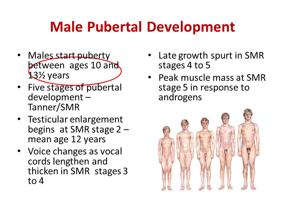 Human Physiology/Development: birth through death