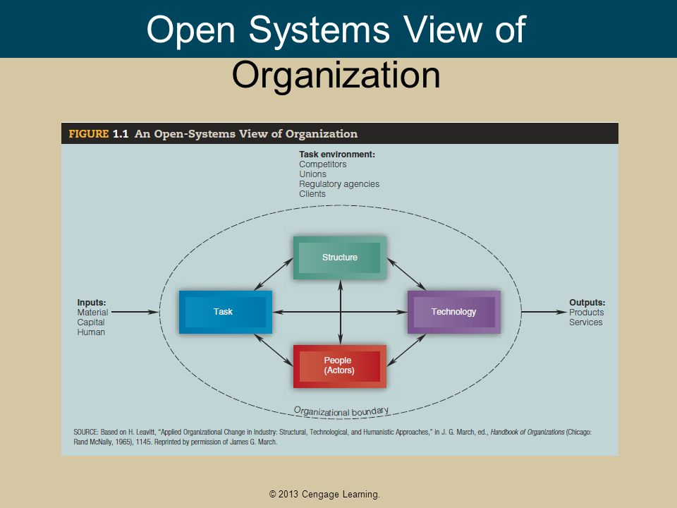 Open System Organizational Structure