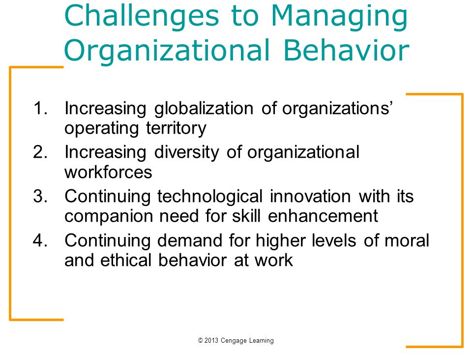 diversity in organizations organizational behavior Of diversity in personal moral codes that would lead to divergent  each  alternative's behaviors with a set of  organization's ethical values) will then  place.