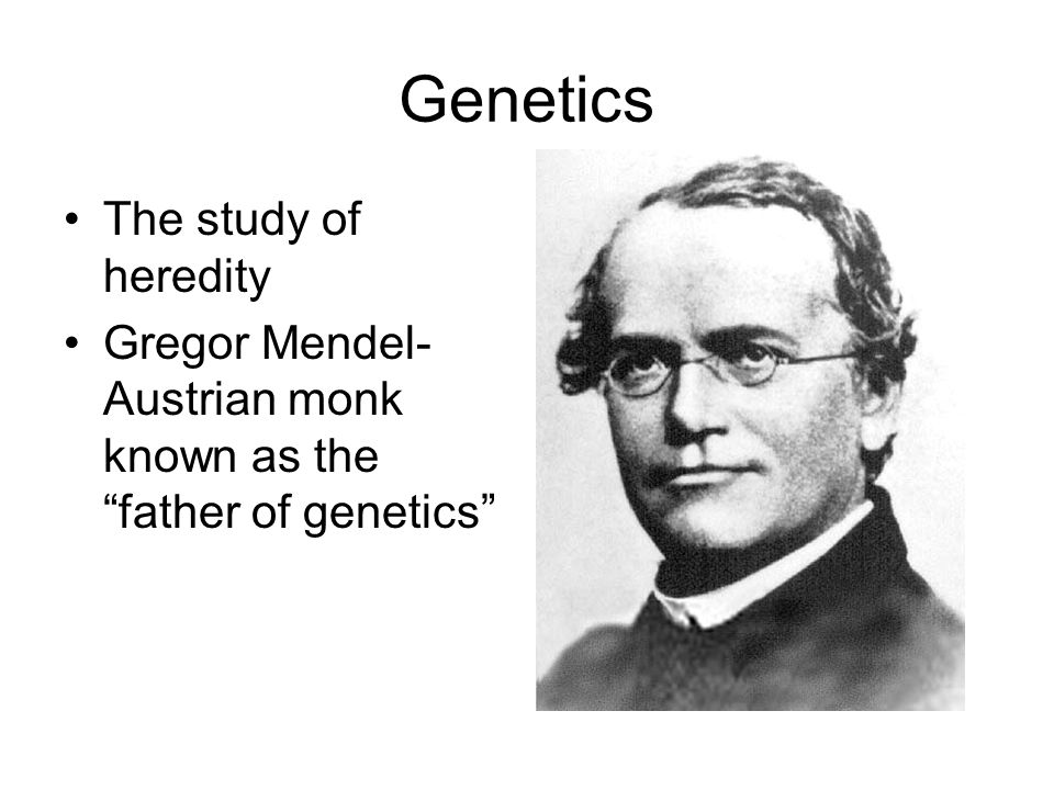 Genetics The study of heredity