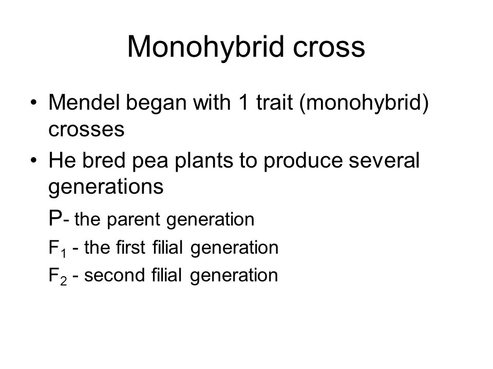 Monohybrid cross Mendel began with 1 trait (monohybrid) crosses