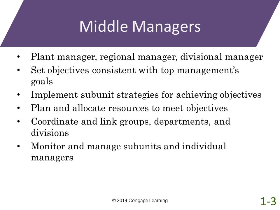 Middle Managers Plant manager, regional manager, divisional manager. Set objectives consistent with top management's goals.