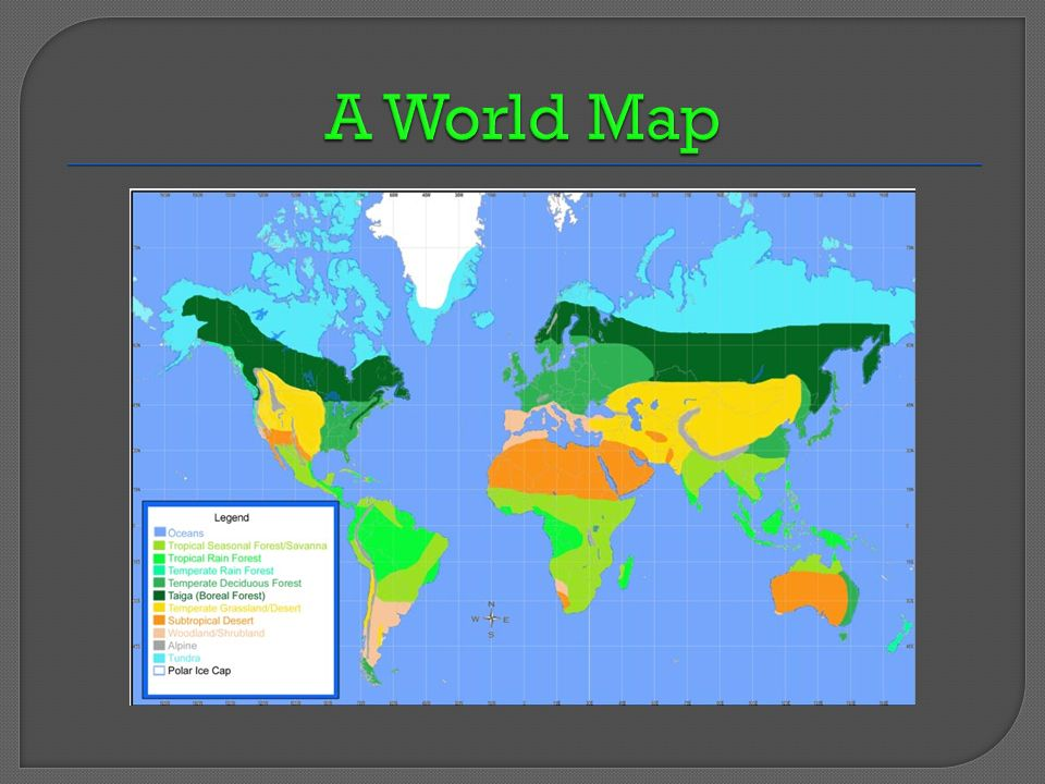 Temperate deciduous forest biomes ppt download 4 a world map gumiabroncs Gallery