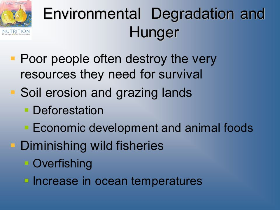 environmental degradation is often represented as A landslide is often viewed as an example of land degradation in action – it   natural forest best represents the situation where soil loss is in approximate.