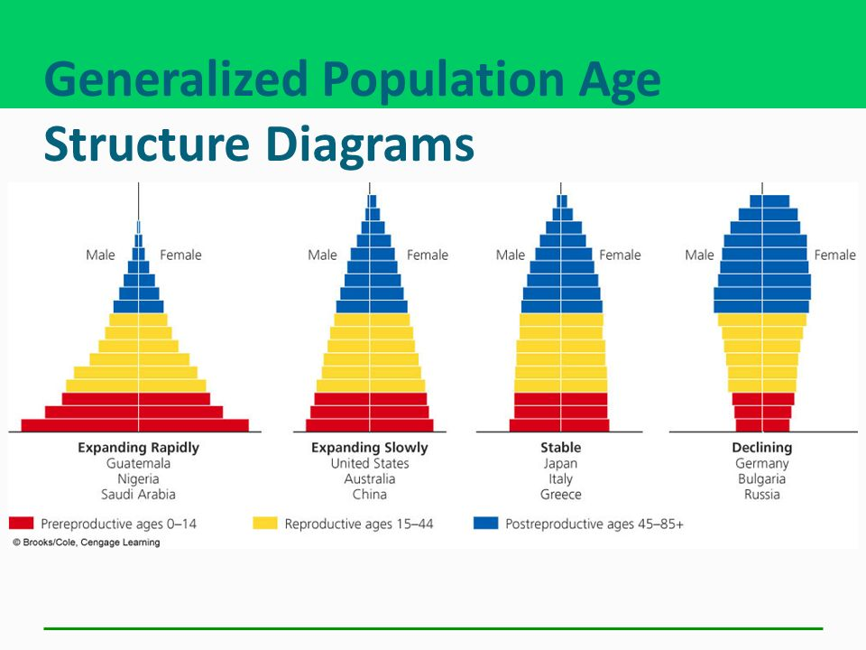 Generalized Population Age Structure Diagrams