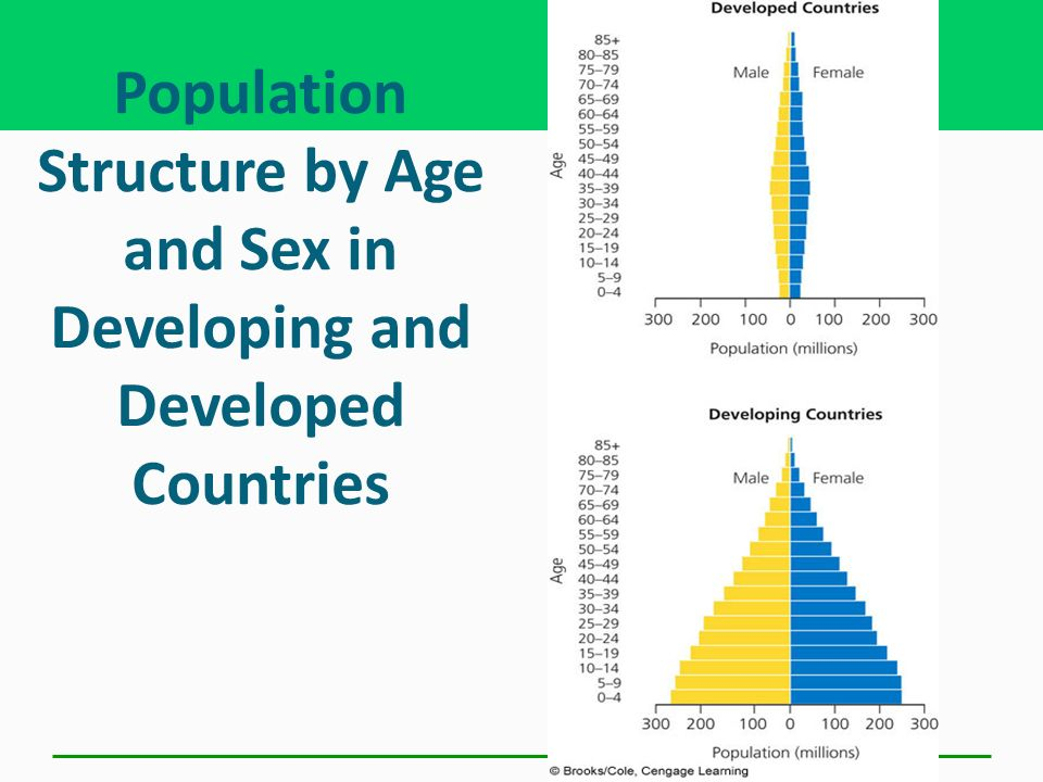 Population Structure by Age and Sex in Developing and Developed Countries