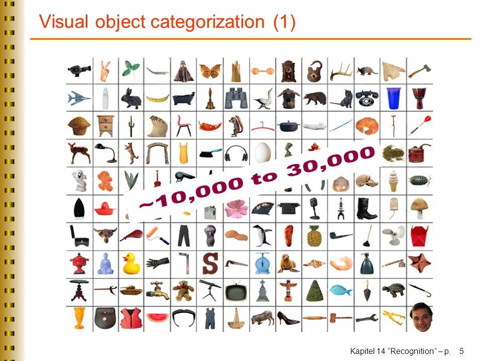 Visual object categorization (1)