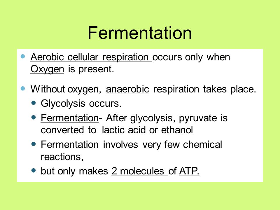 aerobic essay question respiration Anaerobic respiration: microorganisms aerobic respiration: plants, animals  documents similar to cellular respiration essay questions skip carousel.