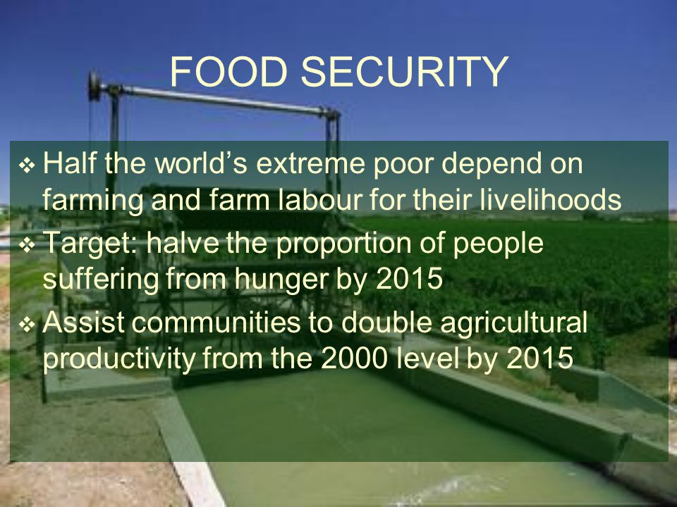 FOOD SECURITY Half the world's extreme poor depend on farming and farm labour for their livelihoods.