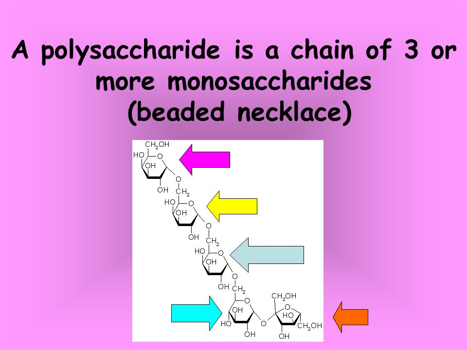Monsaccharides Are Building Blocks Of