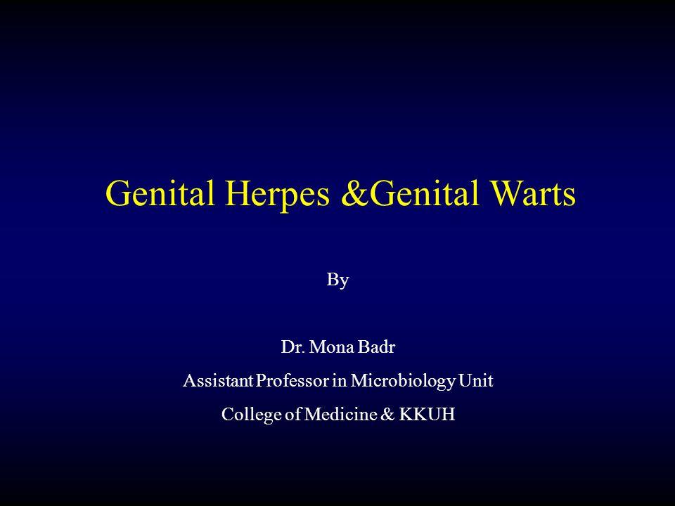 Genital Herpes &Genital Warts