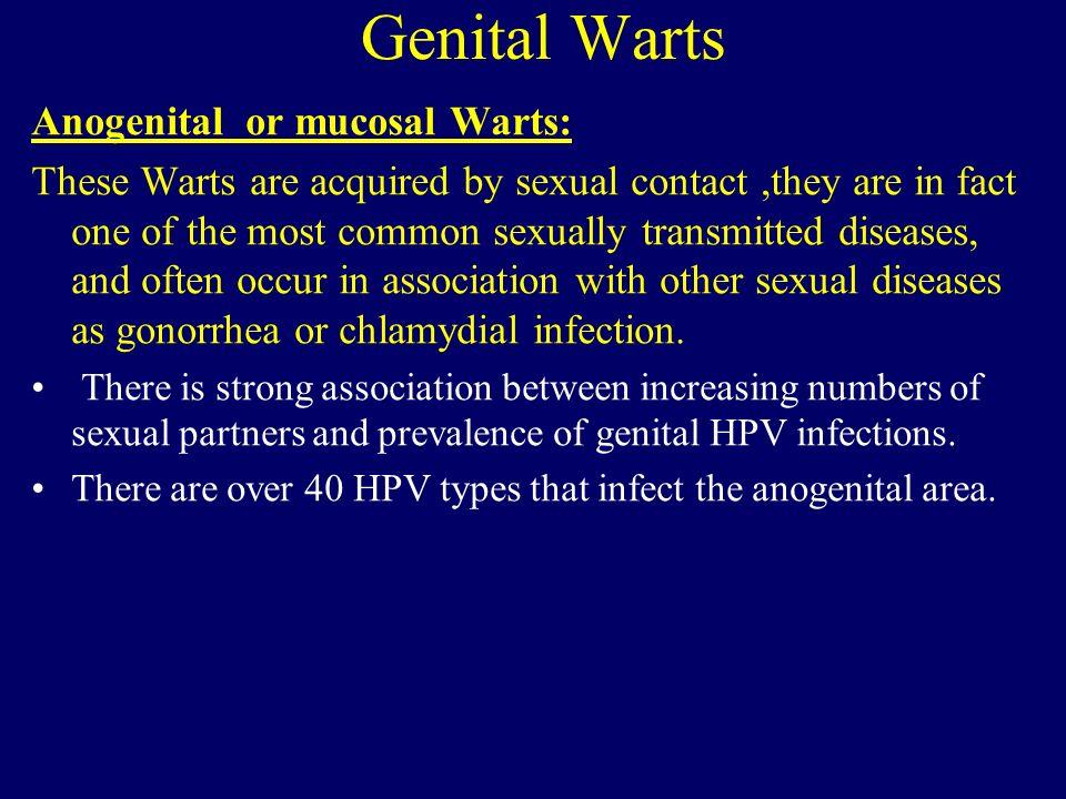 Genital Warts Anogenital or mucosal Warts: