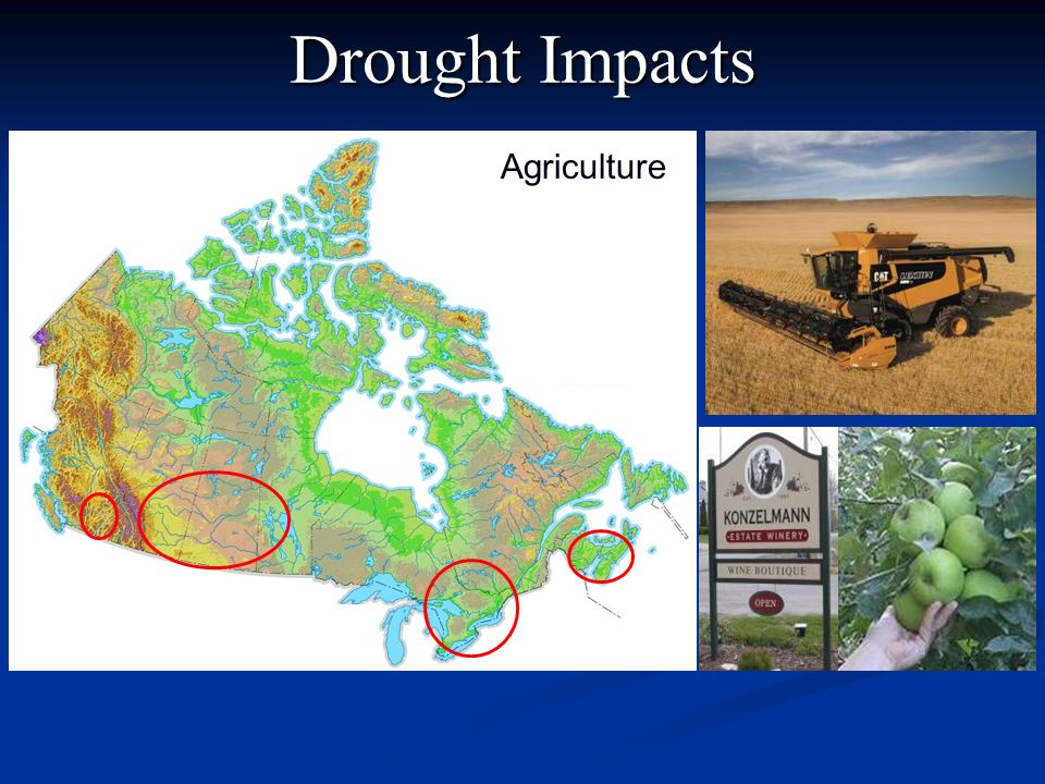 Drought Impacts Agriculture