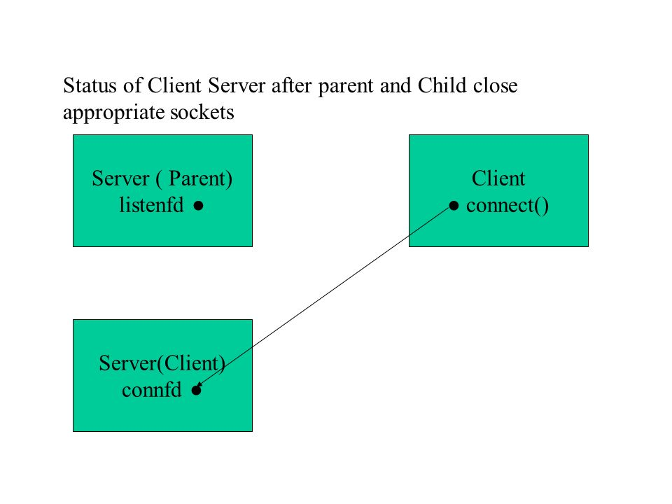 Status of Client Server after parent and Child close appropriate sockets