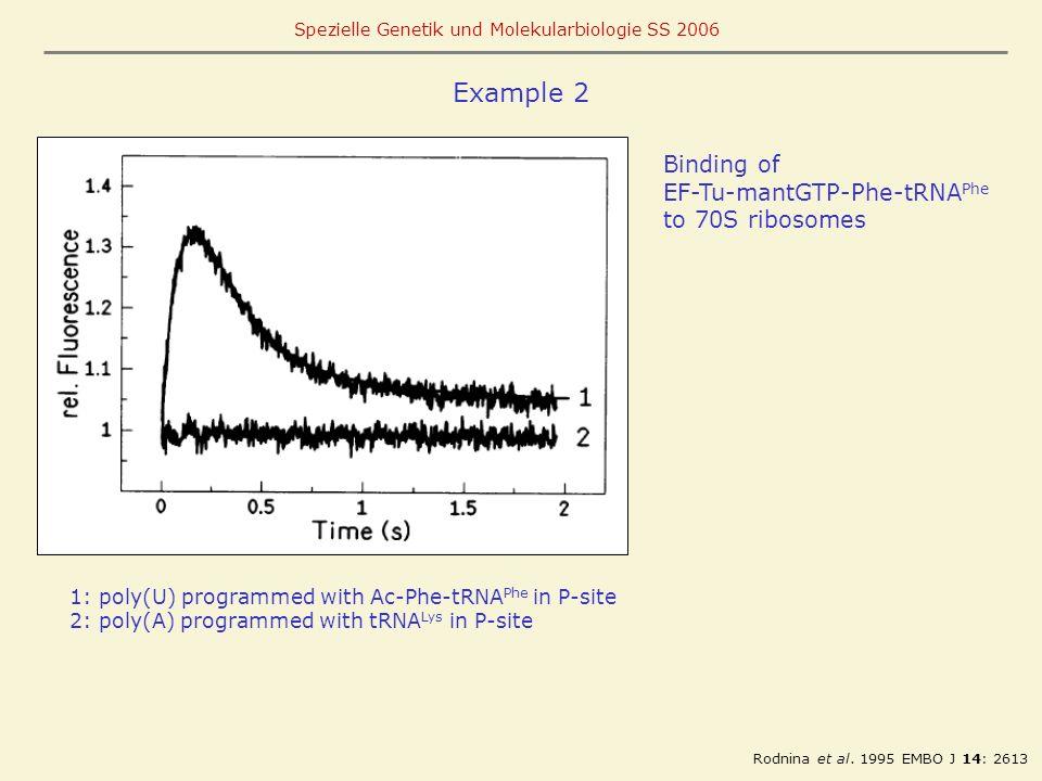 Example 2 Binding of EF-Tu-mantGTP-Phe-tRNAPhe to 70S ribosomes