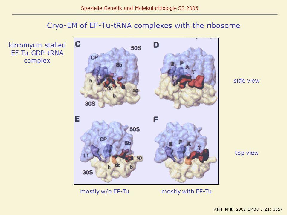 Cryo-EM of EF-Tu-tRNA complexes with the ribosome