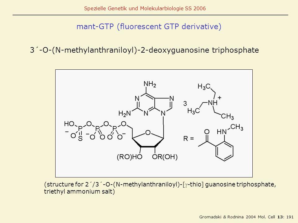 mant-GTP (fluorescent GTP derivative)