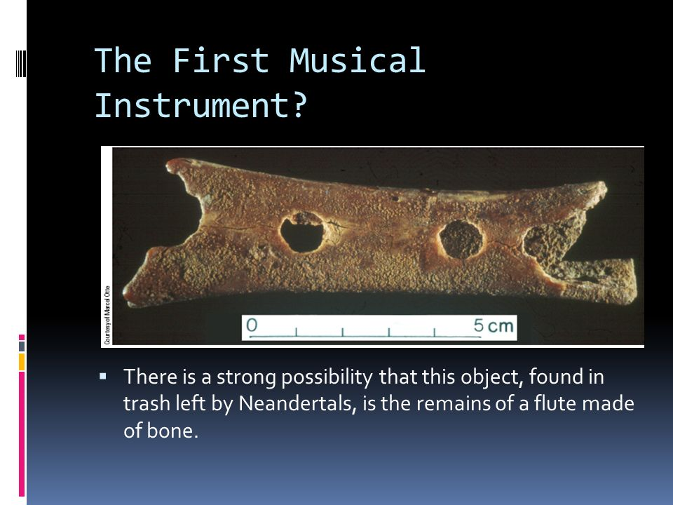 The First Musical Instrument