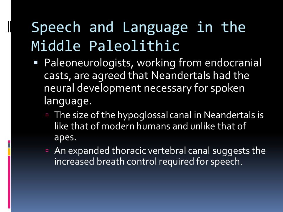 Speech and Language in the Middle Paleolithic