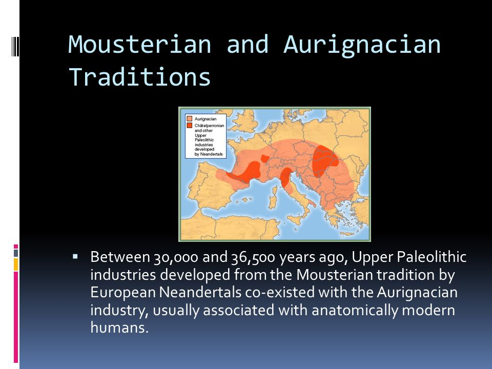 Mousterian and Aurignacian Traditions