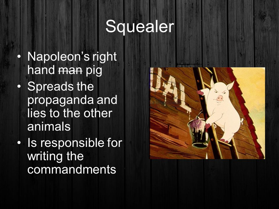 Tactics used by napoleon and squealer