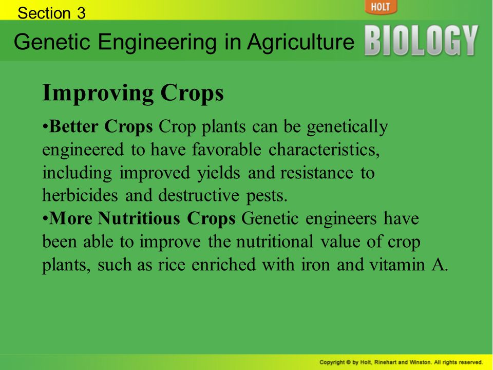 Improving Crops Genetic Engineering in Agriculture