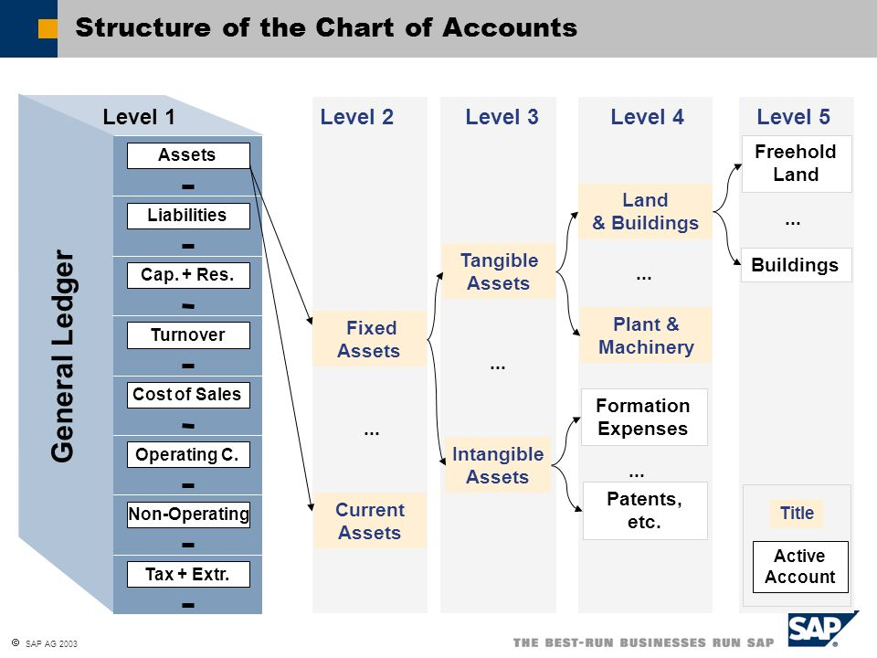 Accounting Standard Government Chart Of Accounts Philippines