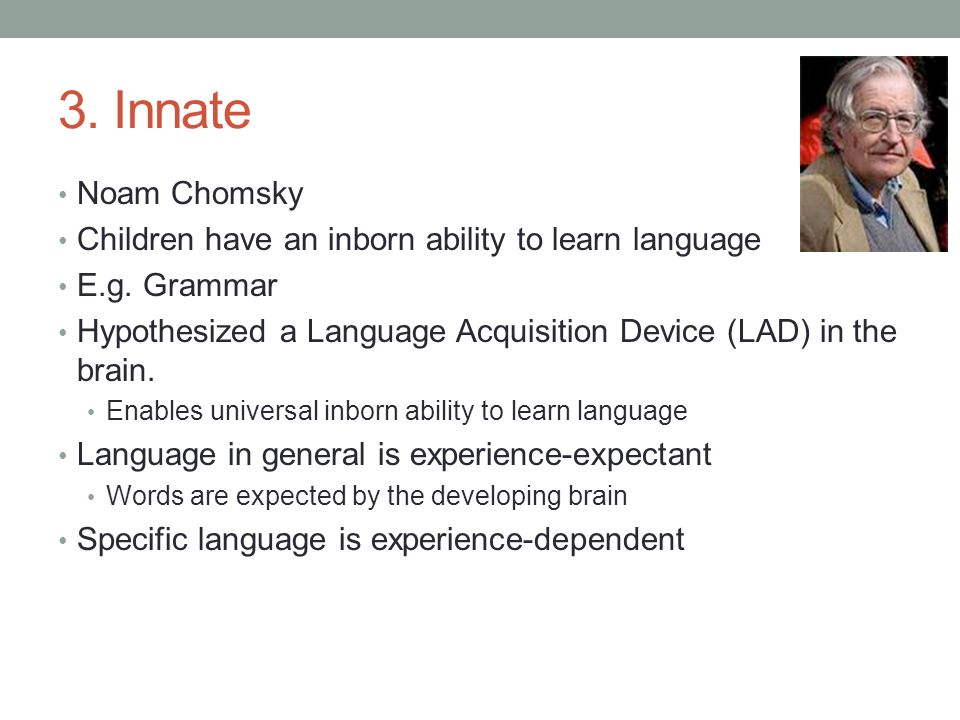Fun Run: 4 Keys to the Ability to Learn Languages Quickly ...
