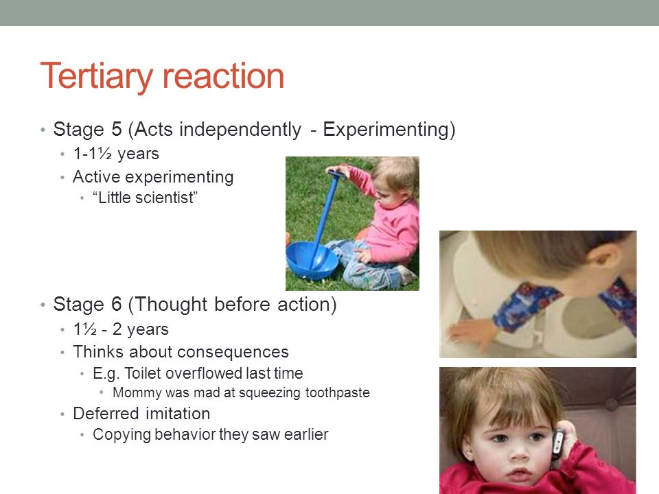 Tertiary reaction Stage 5 (Acts independently - Experimenting)