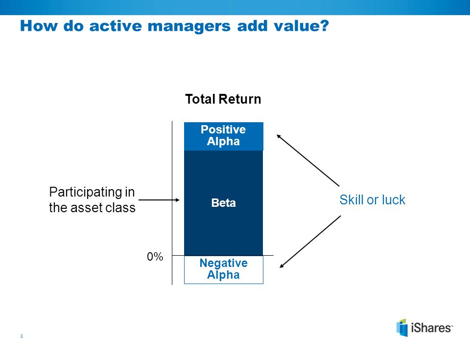 strategic asset allocation portfolio choice for long-term investors pdf