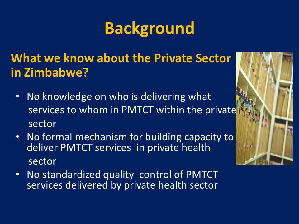 Background What we know about the Private Sector in Zimbabwe